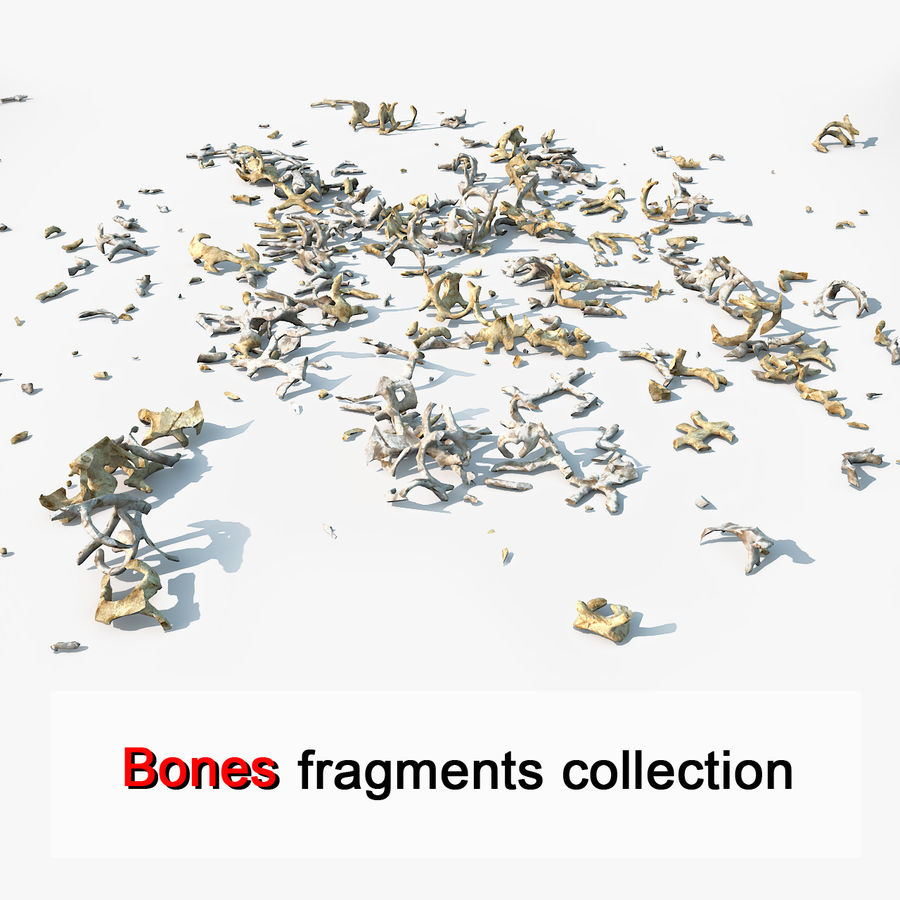 Animal Creature Bone Fragments royalty-free 3d model - Preview no. 1