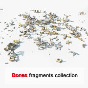 Animal Creature Bone Fragments 3d model