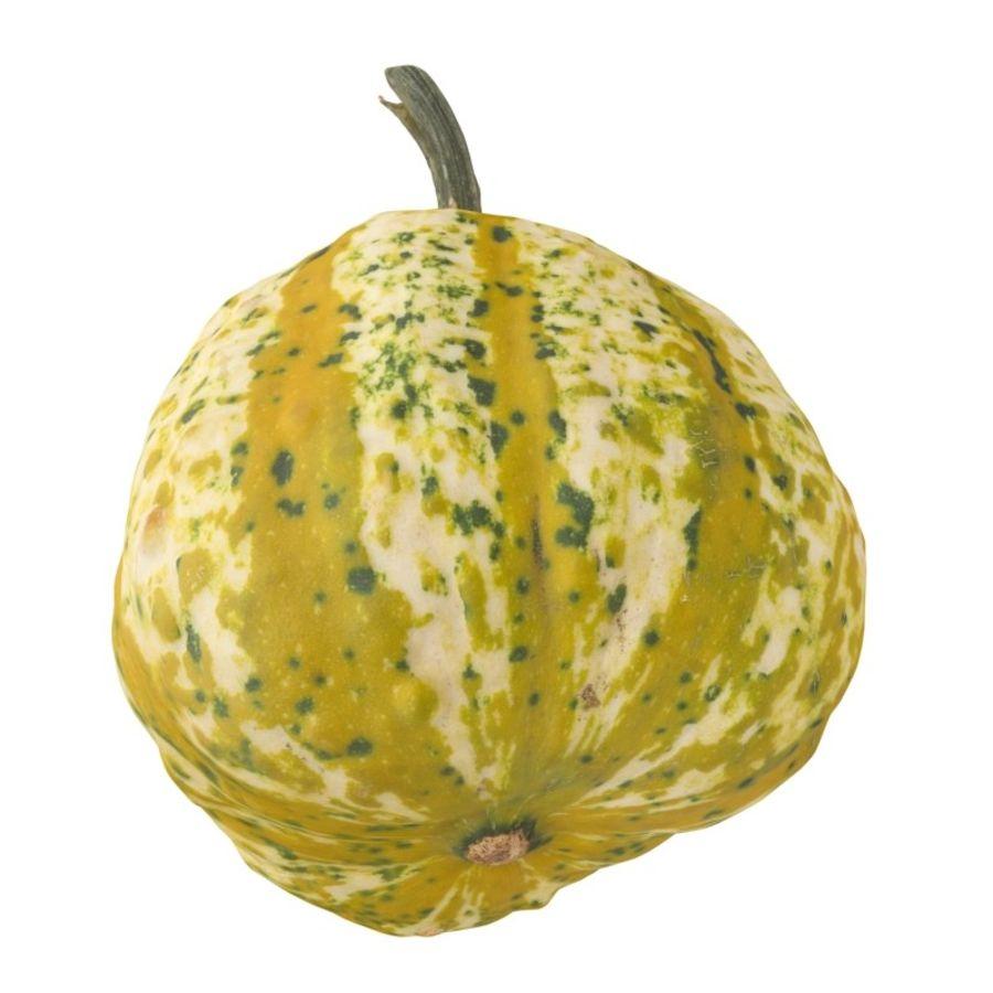 Pumpkin 3 royalty-free 3d model - Preview no. 3