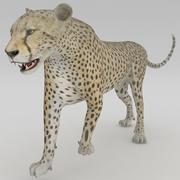 猎豹2构成1 3d model
