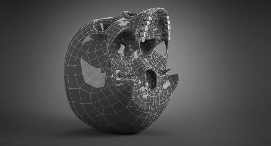 Human Skull royalty-free 3d model - Preview no. 29