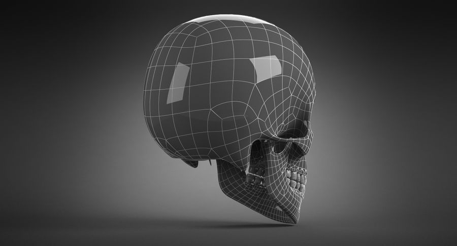 Human Skull royalty-free 3d model - Preview no. 25