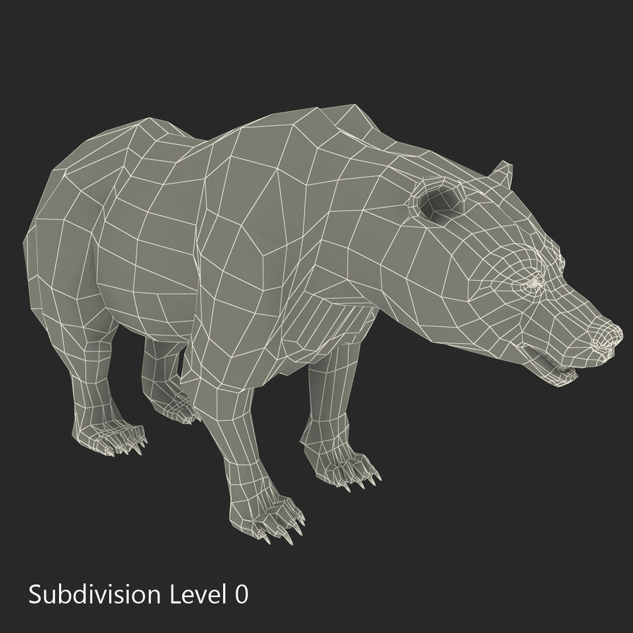 Niedźwiedź grizzly royalty-free 3d model - Preview no. 20
