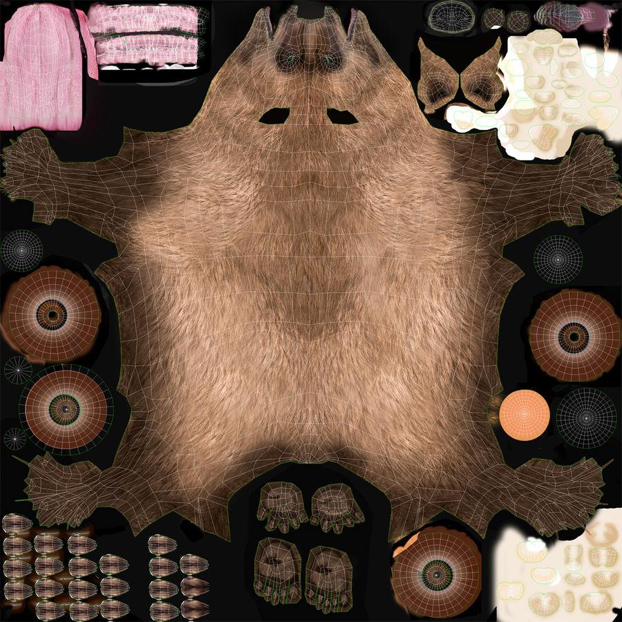 Niedźwiedź grizzly royalty-free 3d model - Preview no. 22