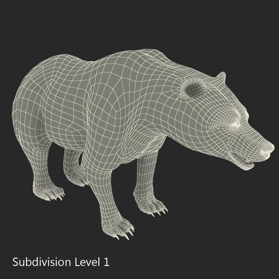 Niedźwiedź grizzly royalty-free 3d model - Preview no. 21