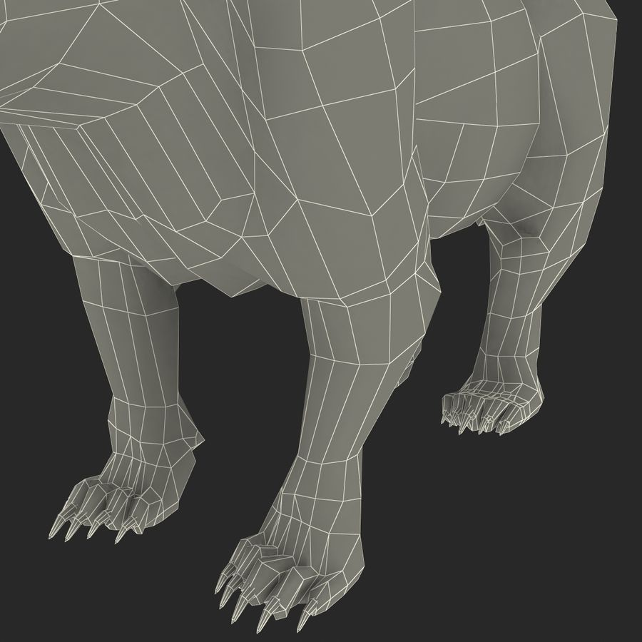 Niedźwiedź grizzly royalty-free 3d model - Preview no. 18