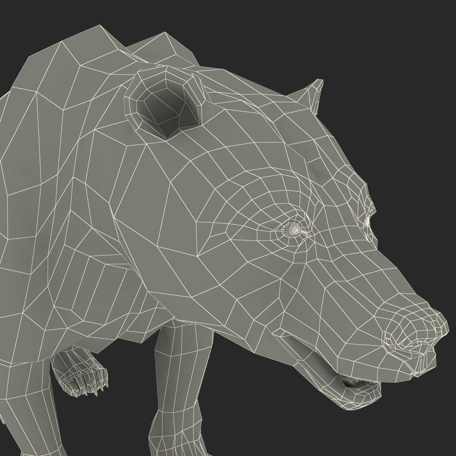 Niedźwiedź grizzly royalty-free 3d model - Preview no. 17
