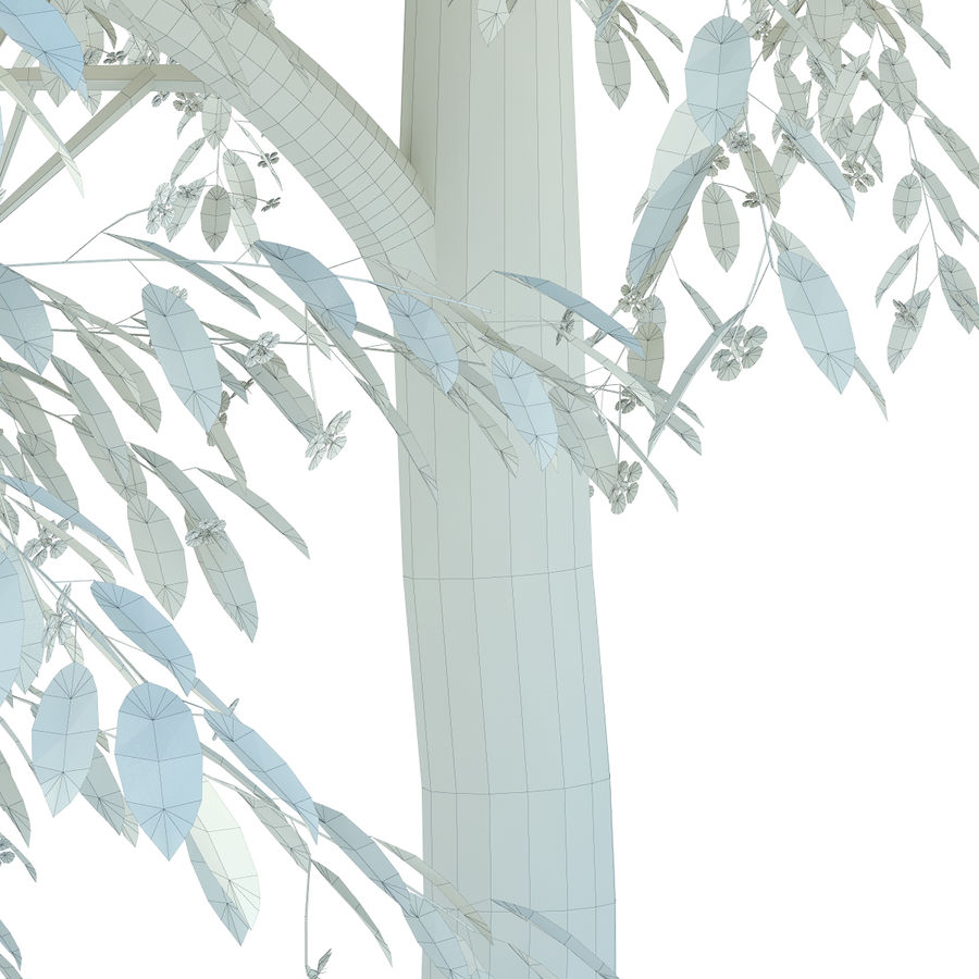 Cherry tree blossomed royalty-free 3d model - Preview no. 8