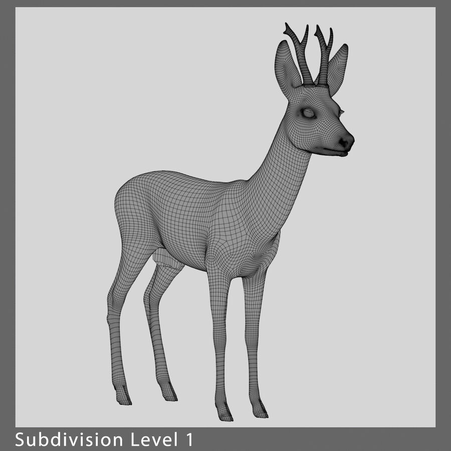 Roe-Deer-Buck royalty-free 3d model - Preview no. 10