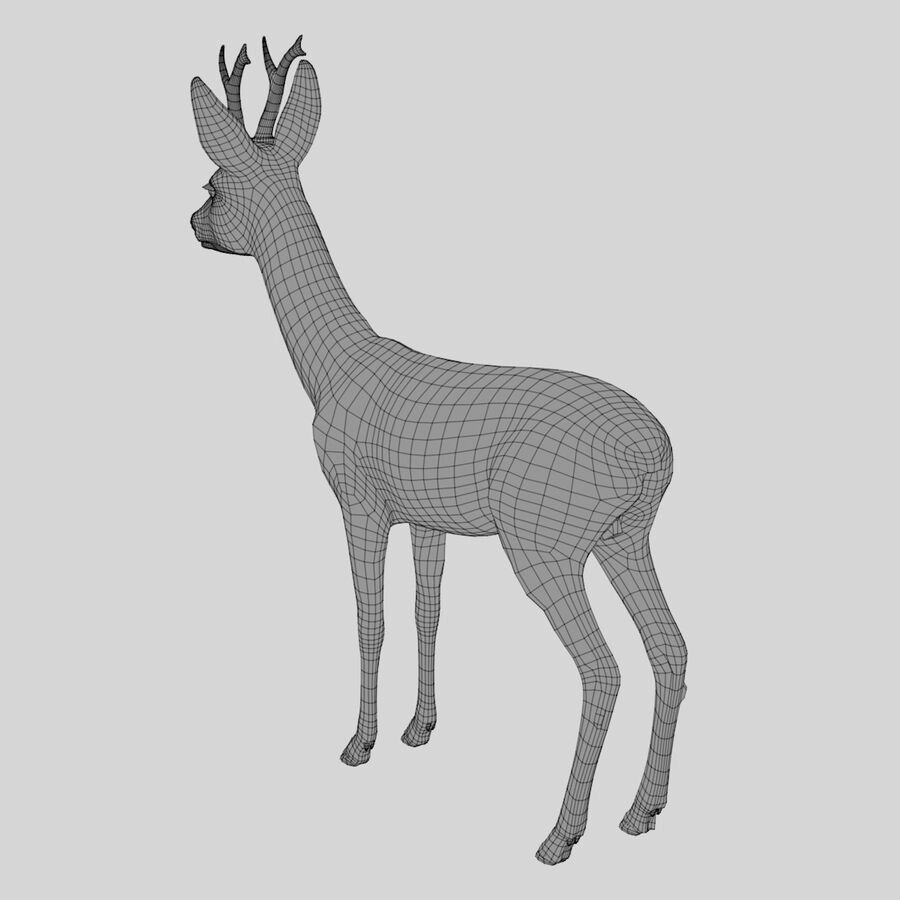 Roe-Deer-Buck royalty-free 3d model - Preview no. 14