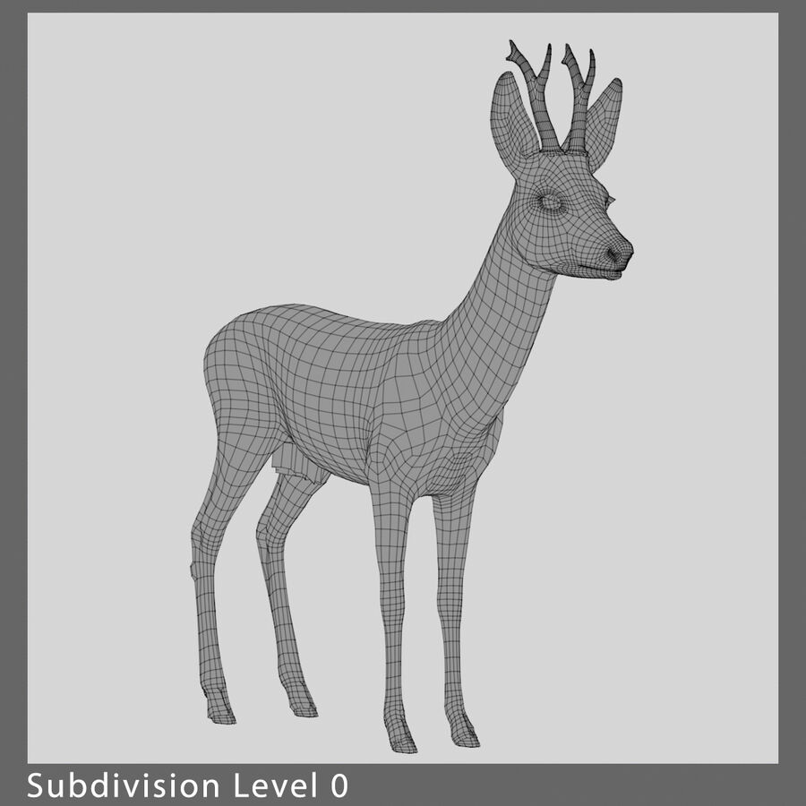 Roe-Deer-Buck royalty-free 3d model - Preview no. 9
