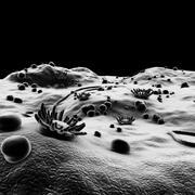 Mikroskopische Umgebung 3d model