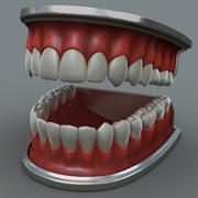 人間の顎 3d model