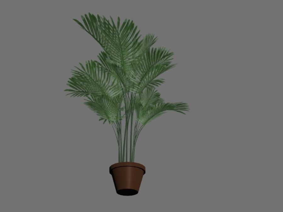 Pot with palm tree royalty-free 3d model - Preview no. 3
