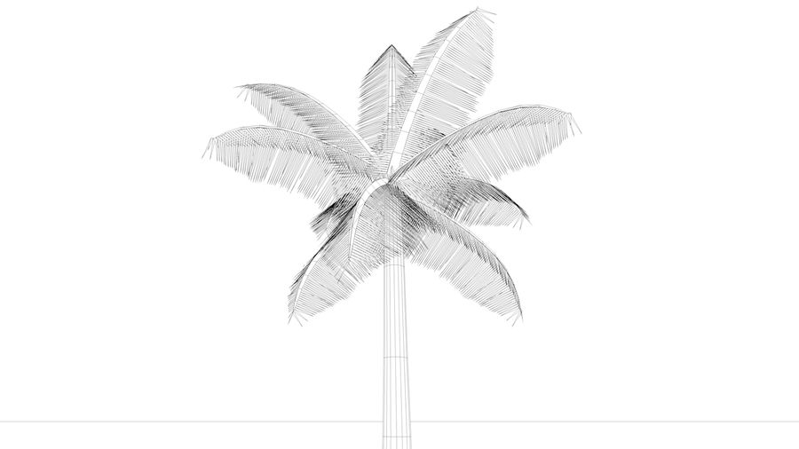 Palm Tree royalty-free 3d model - Preview no. 7