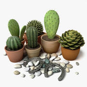 Cactus, Pebbles and Horseshoes 3d model