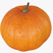 Pumpkin High And Low Poly Scaned 3d model