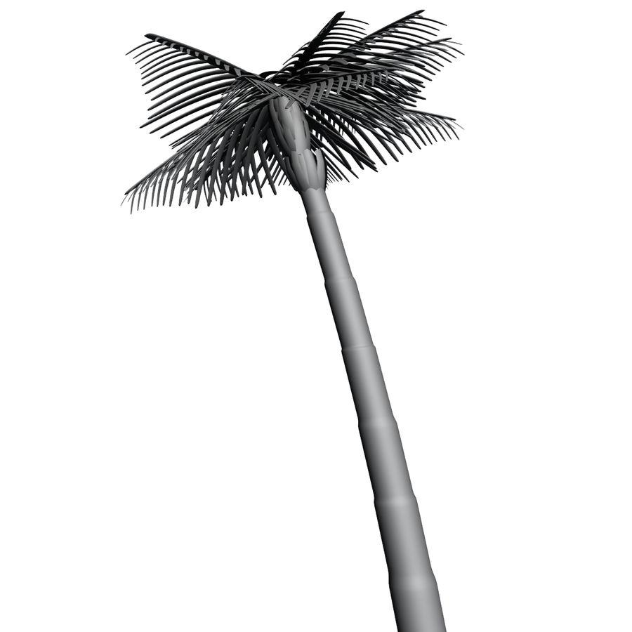 Palme royalty-free 3d model - Preview no. 8