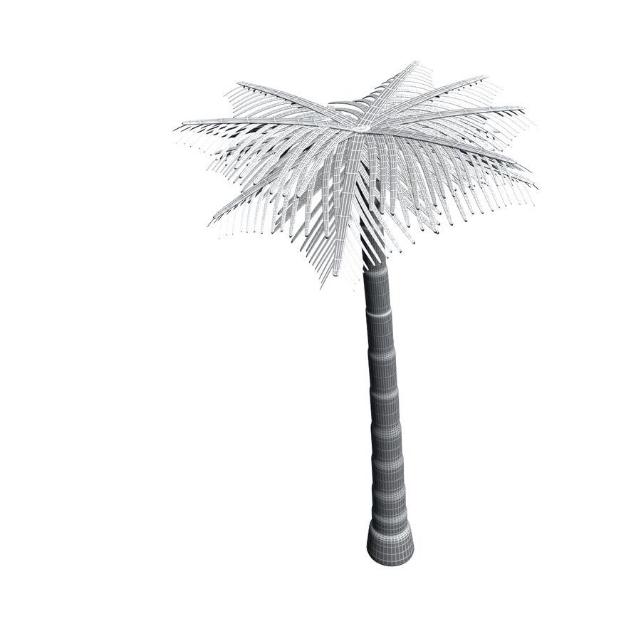 Palme royalty-free 3d model - Preview no. 11