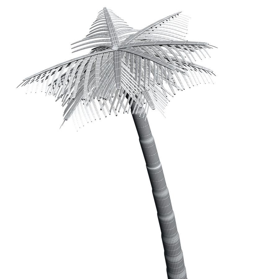 Palme royalty-free 3d model - Preview no. 9