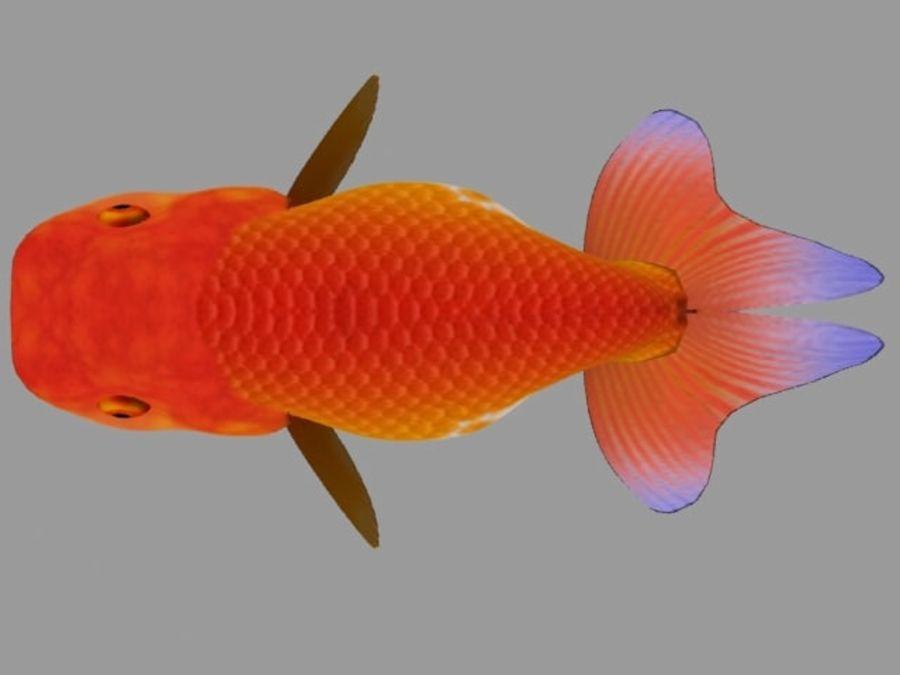Akvaryum balığı royalty-free 3d model - Preview no. 9