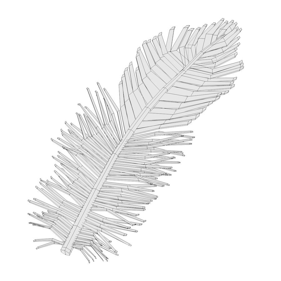 Feather royalty-free 3d model - Preview no. 4