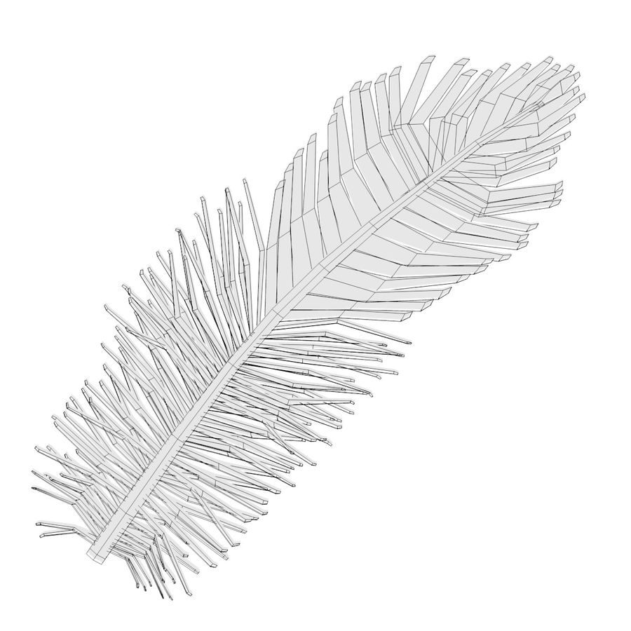 Feather royalty-free 3d model - Preview no. 5