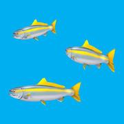 Tecknad fisk - liten 3d model