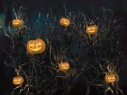Ściana z dyni Halloween 3d model