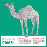 Camel Base Mesh 3d model