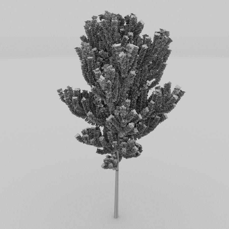 白桦树 royalty-free 3d model - Preview no. 6