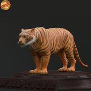 Tigre selvaggia 3d model