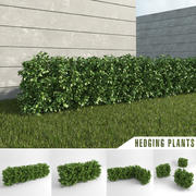 Хеджирование растений 3d model