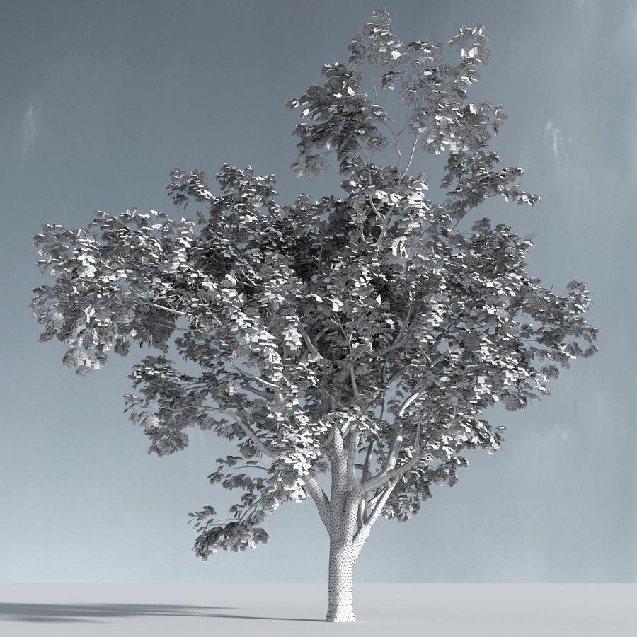 Three Season Trees 2 (+GrowFX) royalty-free 3d model - Preview no. 10
