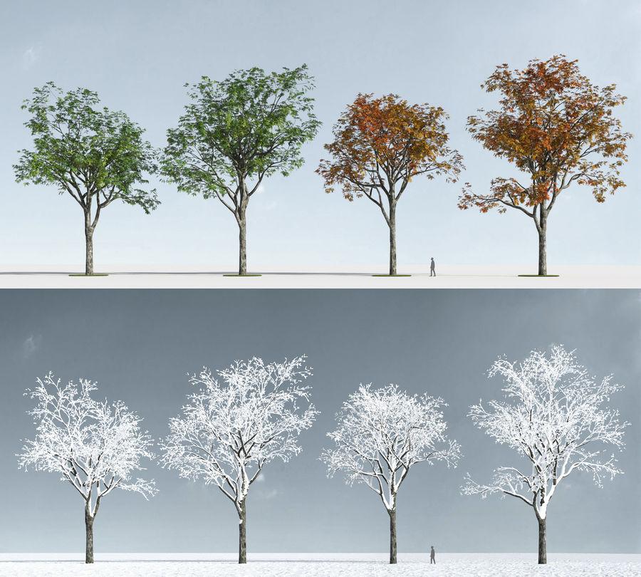Three Season Trees 2 (+GrowFX) royalty-free 3d model - Preview no. 9