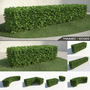 Trimmed Hedges Collection 3d model