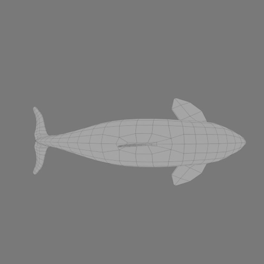orca royalty-free 3d model - Preview no. 5