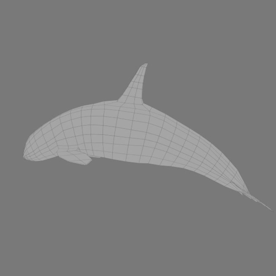 orca royalty-free 3d model - Preview no. 4