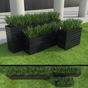 Modern Gräs Set 3d model