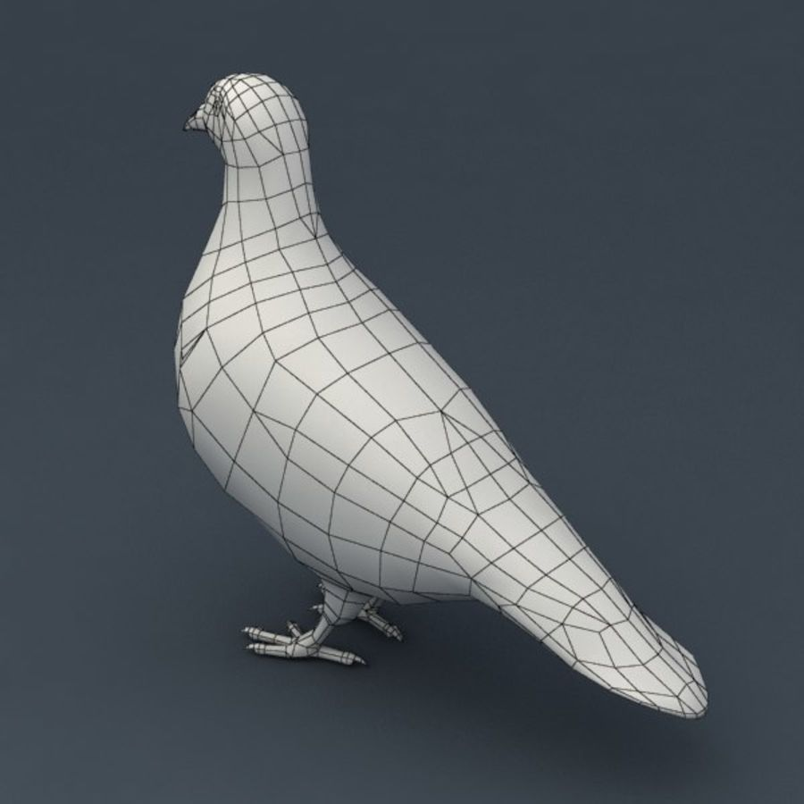 Pigeon rigged royalty-free 3d model - Preview no. 8