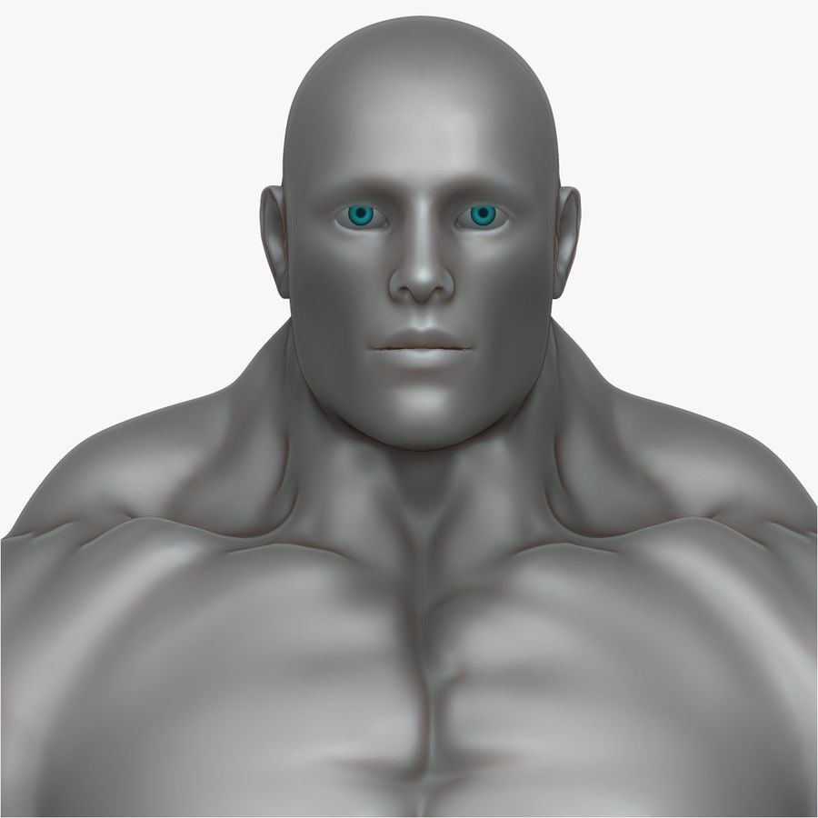 Muscular Man 3 Zbrush Sculpt royalty-free 3d model - Preview no. 15