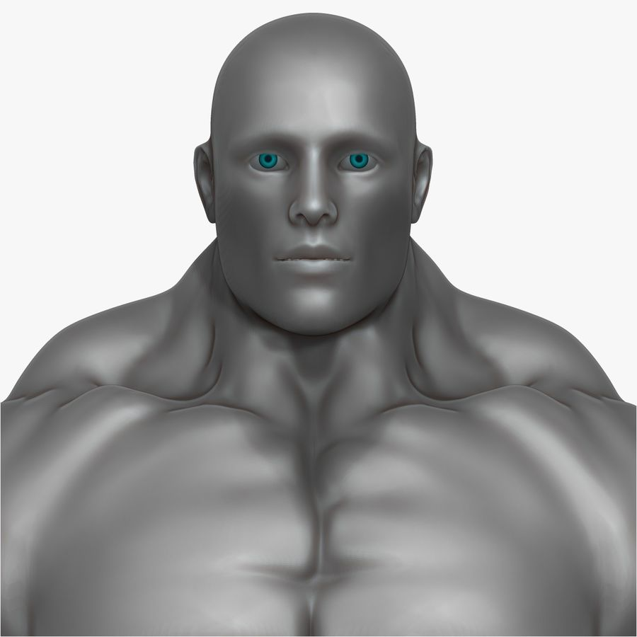 Muscular Man 3 Zbrush Sculpt royalty-free 3d model - Preview no. 7