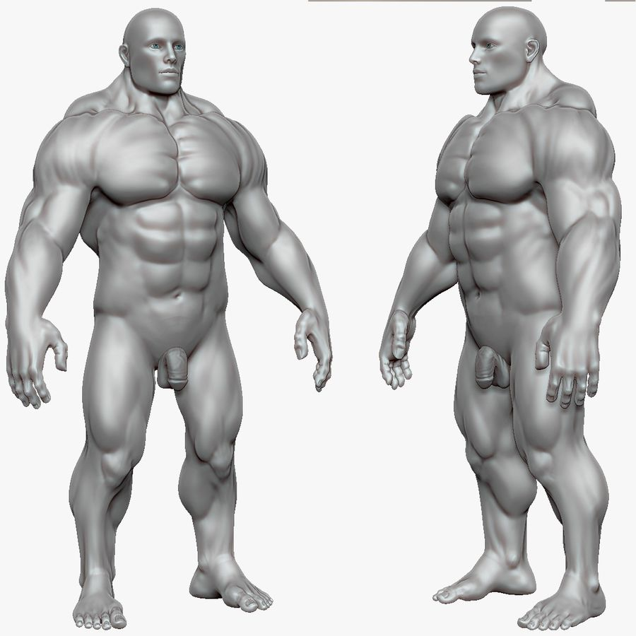 Muscular Man 3 Zbrush Sculpt royalty-free 3d model - Preview no. 13
