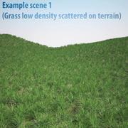 Ray-grass anglais (pelouse) 3d model
