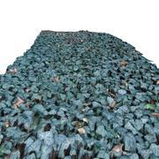 Terreno 2 - Ivy modelo 3d