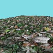 Terreno 4 - Grama e folhas 3d model