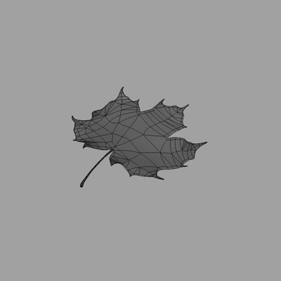 秋の葉 royalty-free 3d model - Preview no. 6