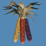 Indyjska kukurydza 3d model