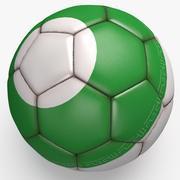Fußballprofi sauber Iran 3d model