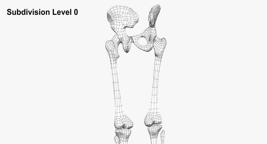 Leg skeleton royalty-free 3d model - Preview no. 11
